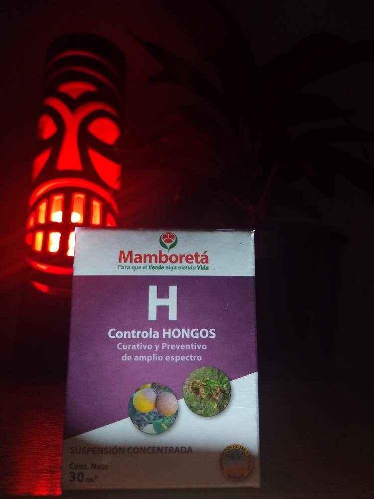 Mamboreta H 30cc